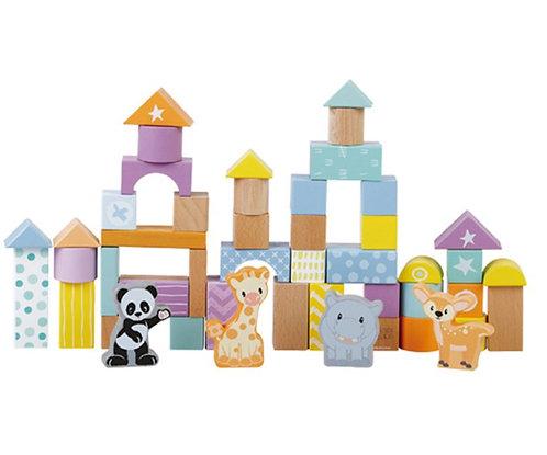 50 Piece Block Set