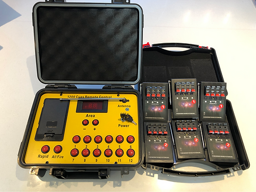 24 Cues Wireless Electronic Firework, Professional Firing System.
