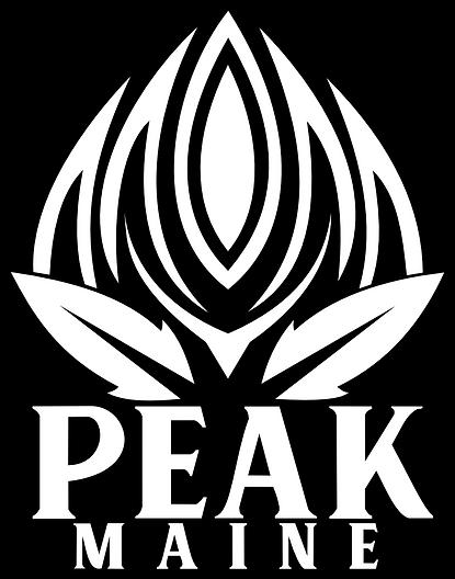 Peak Logo Website.png