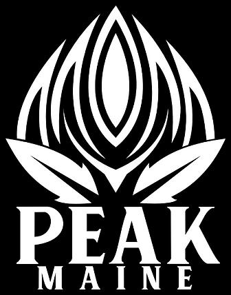Peak Logo Website_edited.png