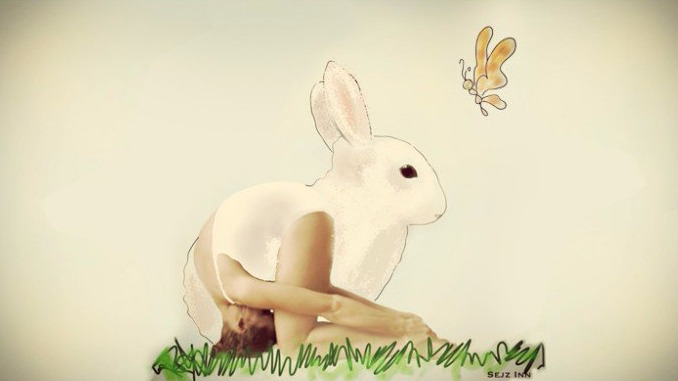 rabbit pose_edited