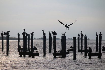 Biloxi Bay, MS