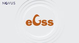 eGss.jpg