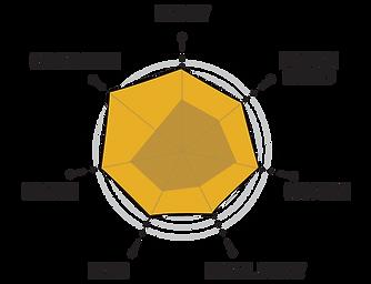 amanda-diagram-skills.png