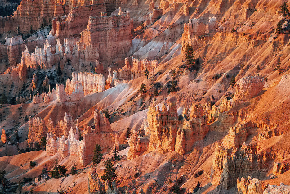 America-National-Park-Bryce-Canyon-hoodo