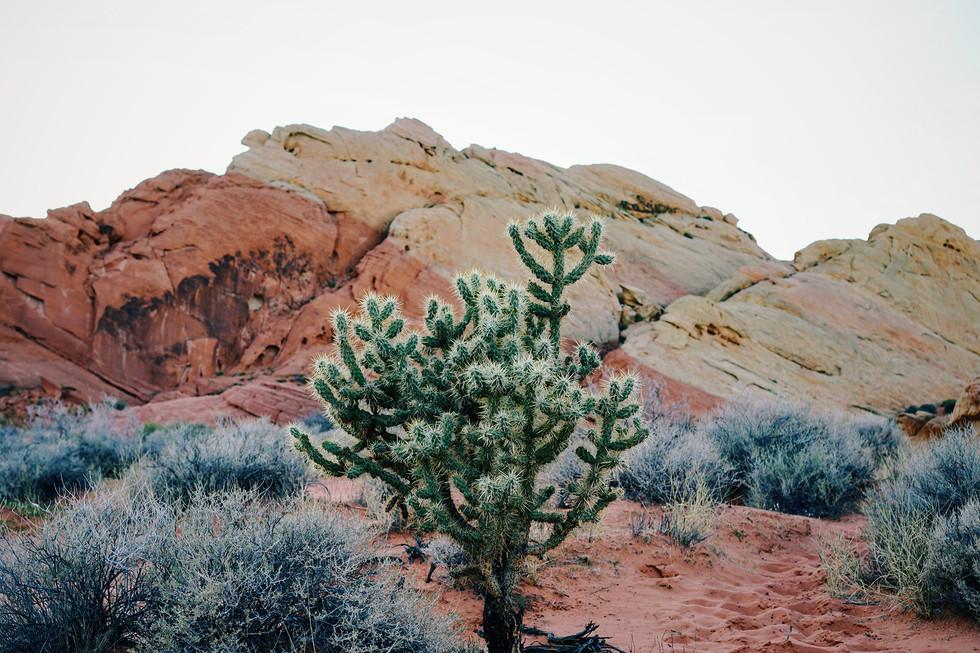 America-State-Park-Valley-Fire-Nevada-ca