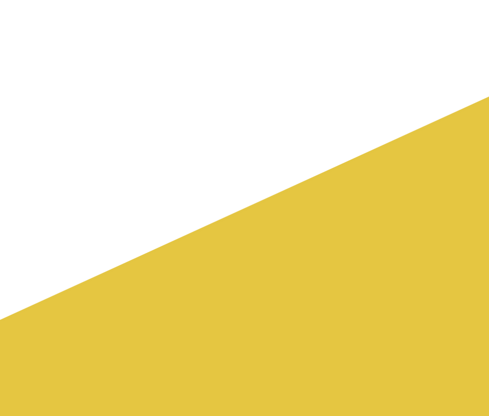 triangle_jaune_v2.png