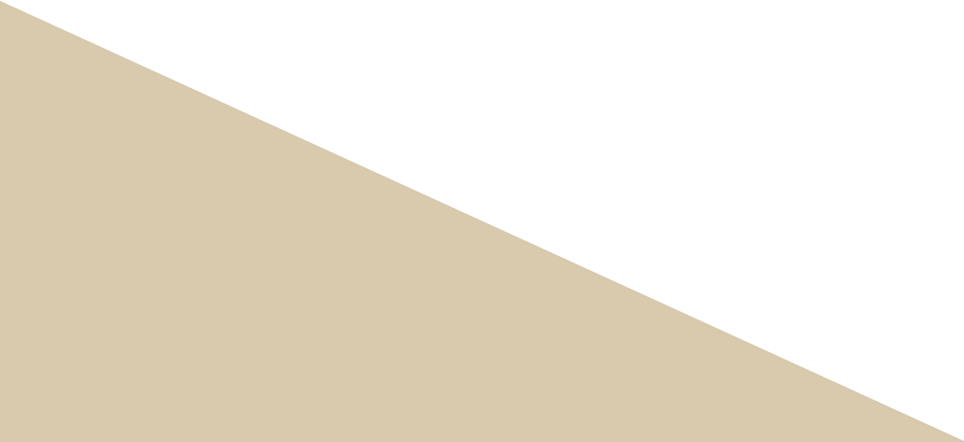 triangle_beige.png
