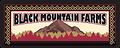 Black_Mtn_logo.png