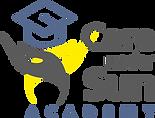 NURSING ACADEMY logo.png