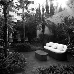 Jardim - Marcos Proença