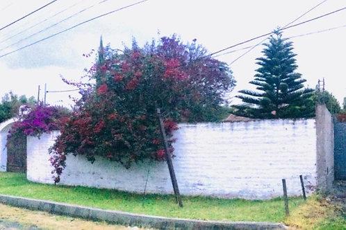 Terreno/Urbanización Tumbaco CONSTRUCTOR/INVERSIONISTA/o LOTES INDEPENDIENTES