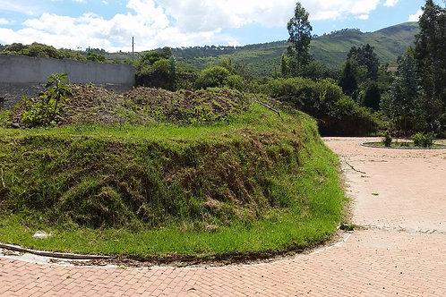Terreno Amplio Chiviquí