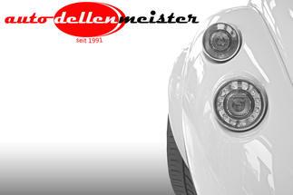 Autodellenmeister Logo