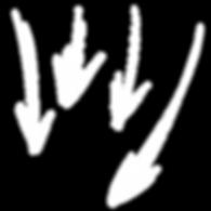 handdrawn-arrows (1).png