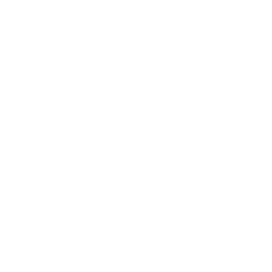 handdrawn-arrows (1).png