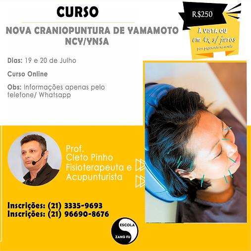 CURSO CRANIOACUPUNTURA.png