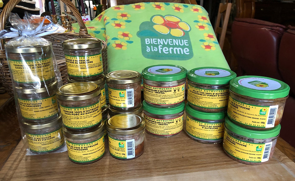 boutique-sologne-autruches