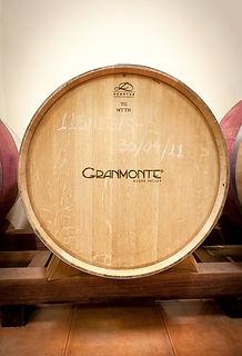 Copy of Granmonte-83.jpg