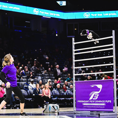 Big-Air Box Jump