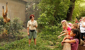 zoo keeper dallas zoo.jpg