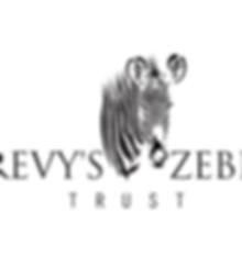 grevy zebra trust.png