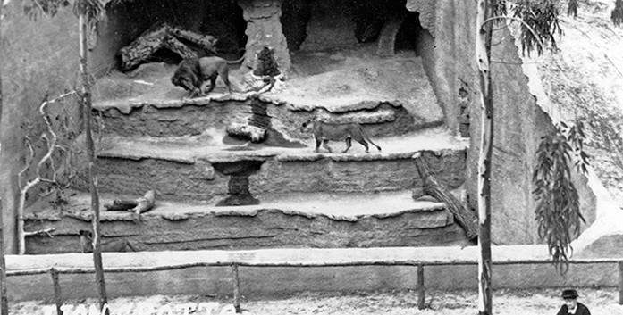 San Diego Zoo - History