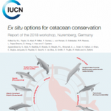Ex situ options for cetacean conservatio