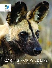 waza welfare strategy.jpg