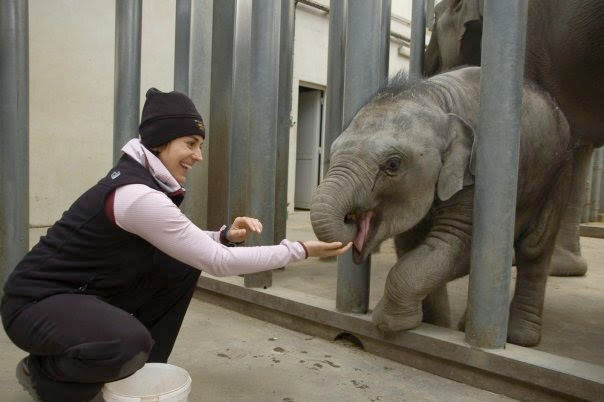 Sabrina interacting with Jade, a young Asian elephant, in 2010.