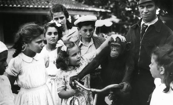 Lisbon Zoo - History