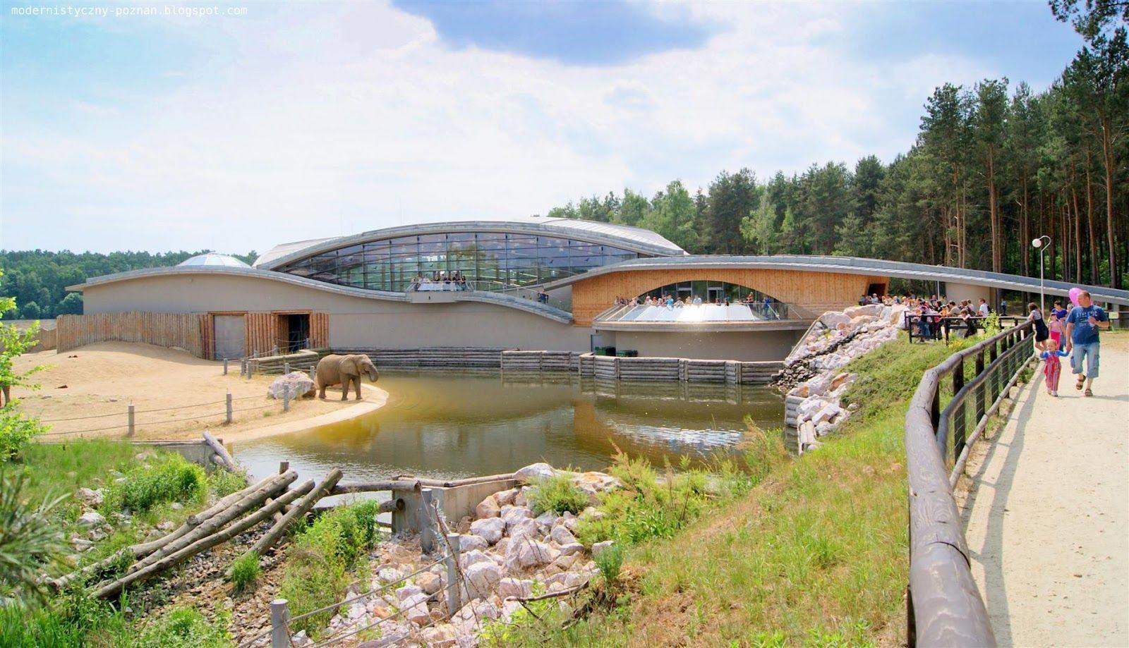 Poznan Zoo - Updates