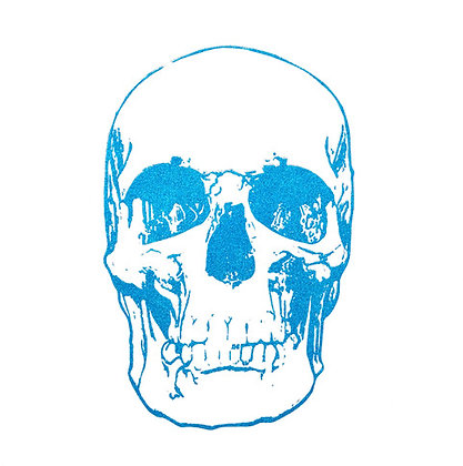 Light Blue Skull