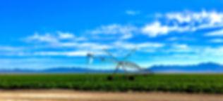 PEnoyer landscape hires.jpg