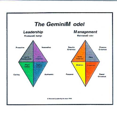 The Gemini Model of Leadership and Management