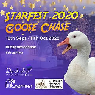 Star Fest Goose Chase-Square-7.jpg