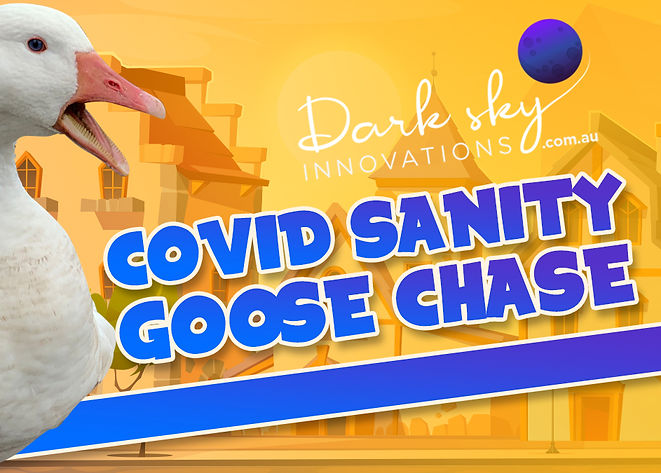 Covid Sanity Goose Chase-web-banner-2.jp