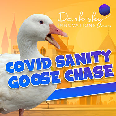 Covid Sanity Goose Chase-square-2.jpg