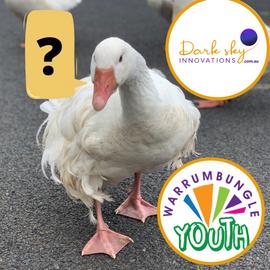 FAQ Warrumbungle Youth Goose Chase.png