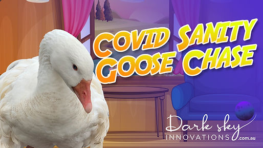 Covid Sanity Goose Chase-web-banner-1.jp