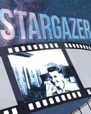 StarGazer by David.png