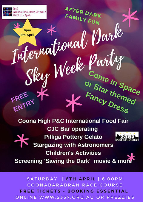 IDSW Party poster.jpg