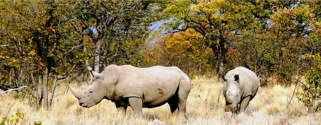 Namibia 4X4 Adventure Tours