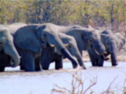 Book Botswana 4X4 Adventure Tours