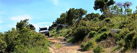 Massif 4X4 Adventure Tours