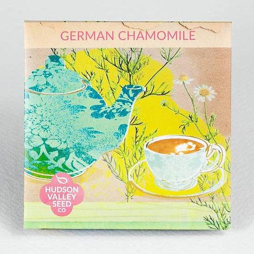 German Chamomile Seeds - Organic
