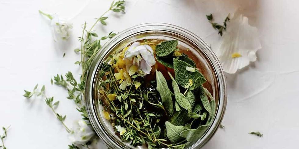 Herbs & Preparations - Beginner