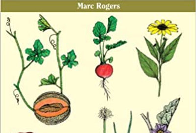 Saving Seeds: The Gardener's Guide to Growing and Storing Seeds