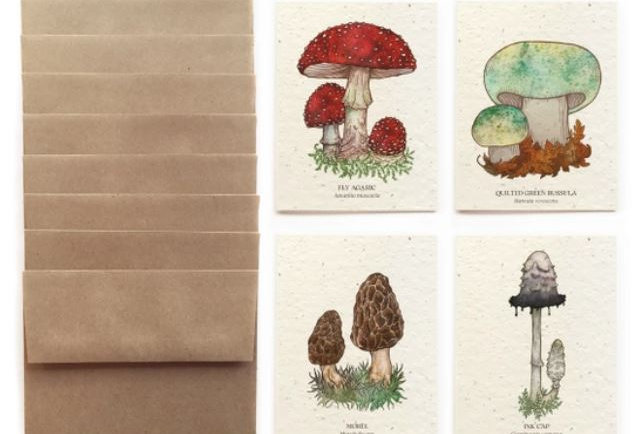 Wild Mushroom Greeting Cards - Set Of 8 Plantable Seed Paper