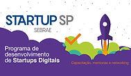 startup sp Sebrae.jpg